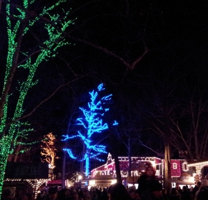 SDC lights 3