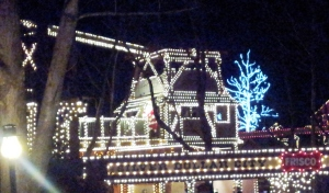 SDC lights 5